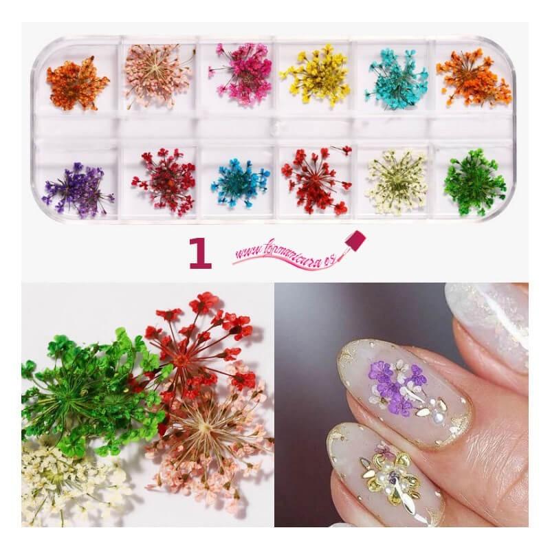 Kits de flores secas para uñas 1